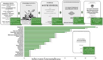 Eleutherococcus prosztatagyulladással - Férfiaknak - Étrendkiegészítők - Babi néni gyógyfüvei