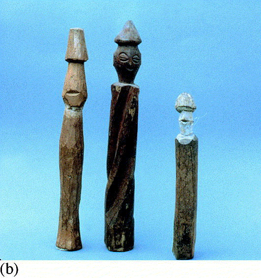Traditional pharmacology and medicine in Africa
