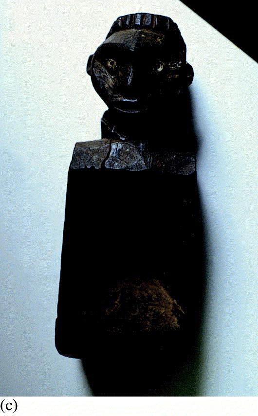 sculpture homme inhaltsstoffe