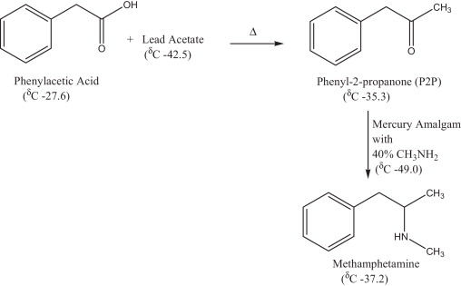 The use of δ13C isotope ratio mass spectrometry for