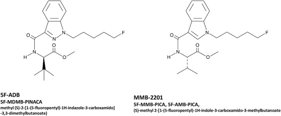 Acute intoxication caused by synthetic cannabinoids 5F-ADB and MMB