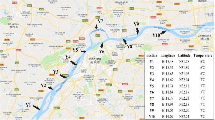 Barcoding for diatoms in the Yangtze River from the