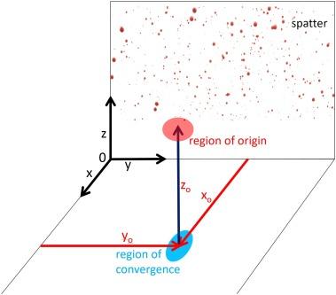 Determining the region of origin of blood spatter patterns