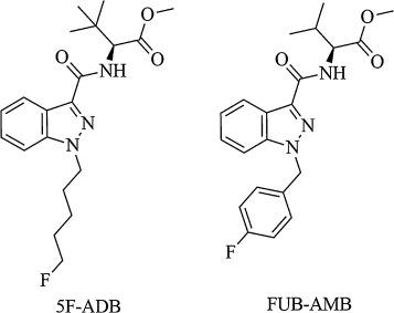 A case of 5F-ADB / FUB-AMB abuse: Drug-induced or drug-related death