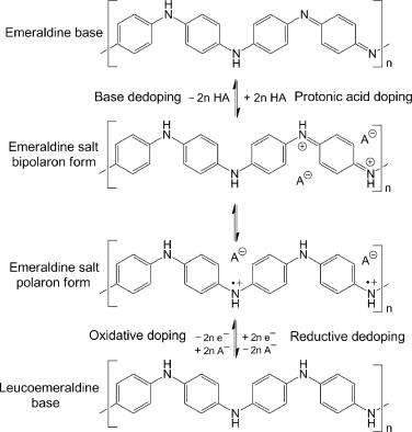 Recent advances in polyaniline research: Polymerization