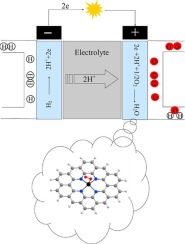 Dissociation of O2 molecule on Fe/Nx clusters embedded in