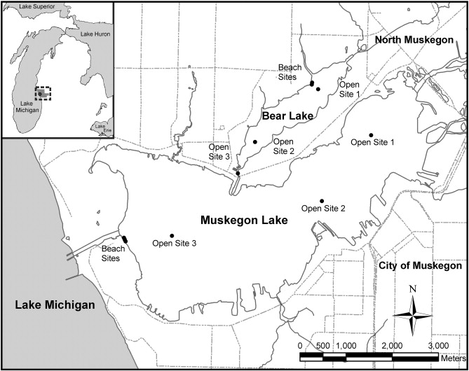 The Influence Of Environmental Conditions And Hydrologic