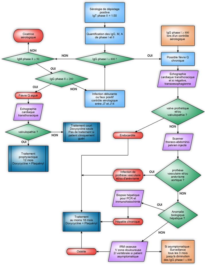Fièvre Q : actualités diagnostiques et thérapeutiques ...