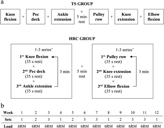 Effects of high-resistance circuit training in an elderly