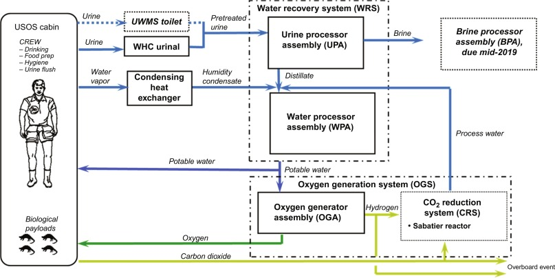 Microbiology of the Built Environment in Spacecraft Used for