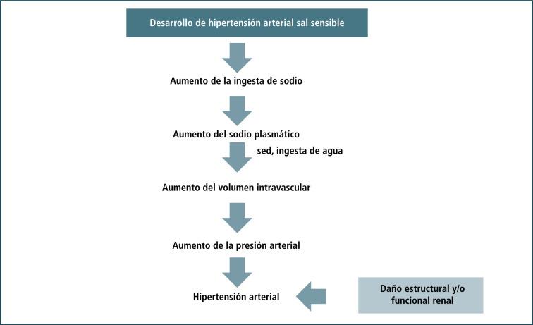 La presión arterial alta causa sueño