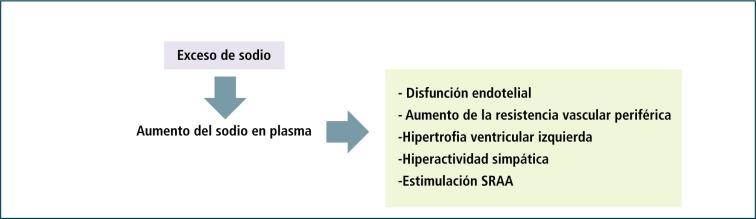 Hipertensión arterial y deficiencia de sodio