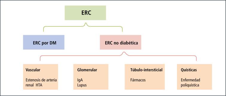 Cómo reducir la presión arterial dr ax