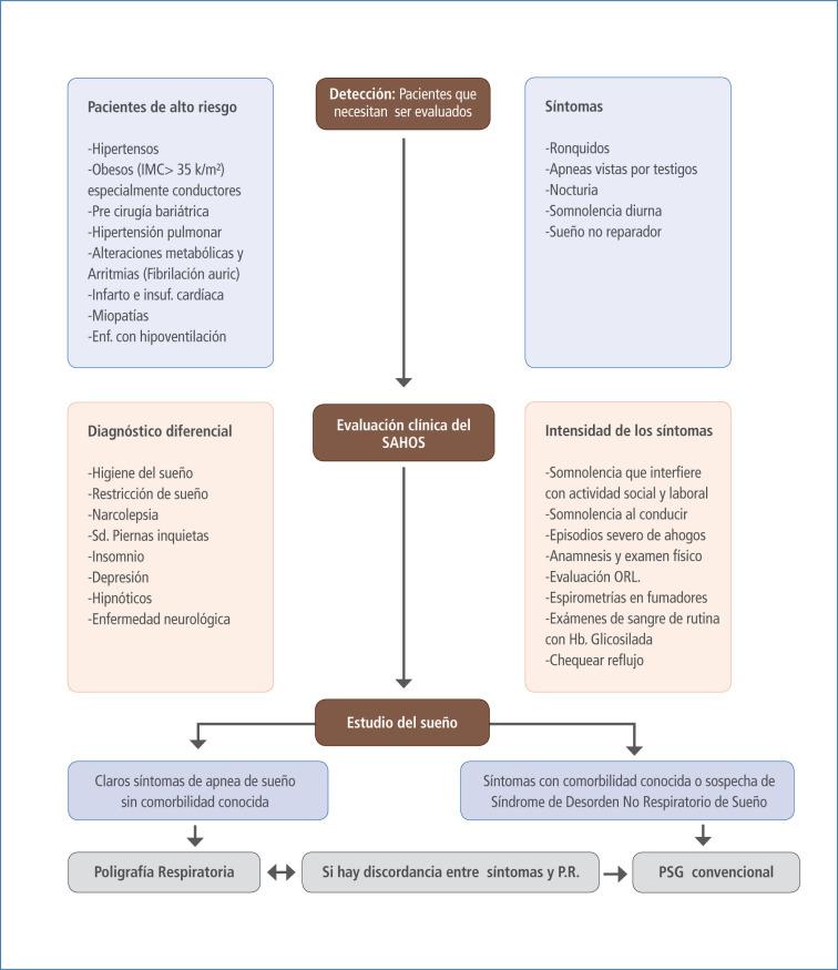 Apnea del sueño: cuadro clínico y estudio diagnóstico - ScienceDirect