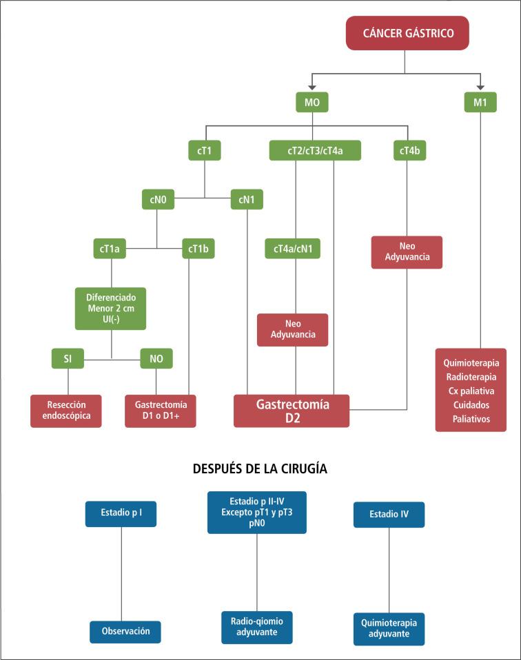 Actualización del diagnóstico y tratamiento del cáncer gástrico ...