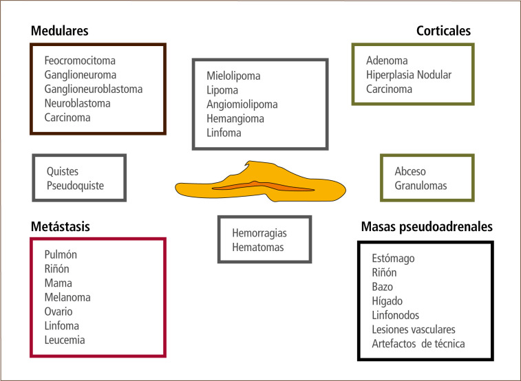 Síntomas de cortisol alto