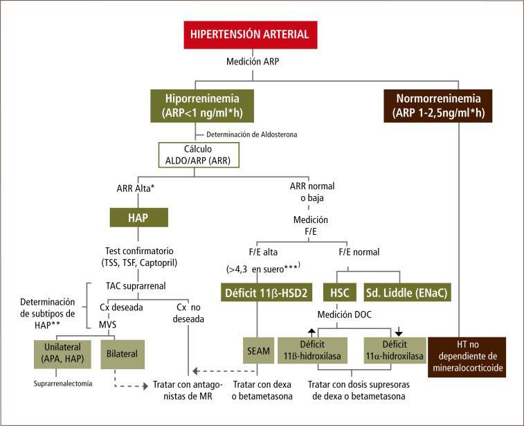 Condiciones secundarias de hipertensión arterial