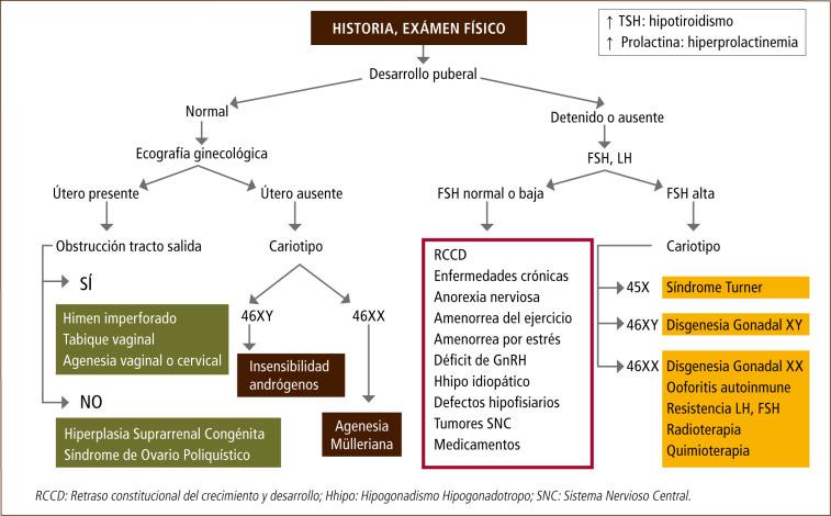 Caracteres sexuale primarios y secundarios pdf