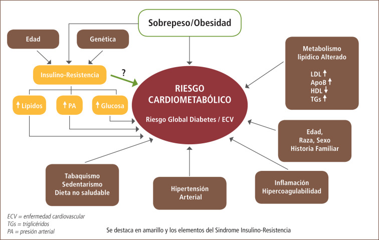 factores metabólicos de la diabetes