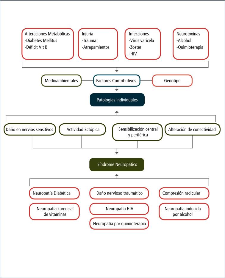 guías específicas para el dolor lumbar no específico para la diabetes