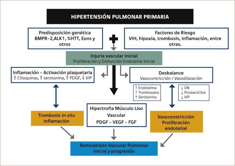 Hipertensión pulmonar e hipertensión portal