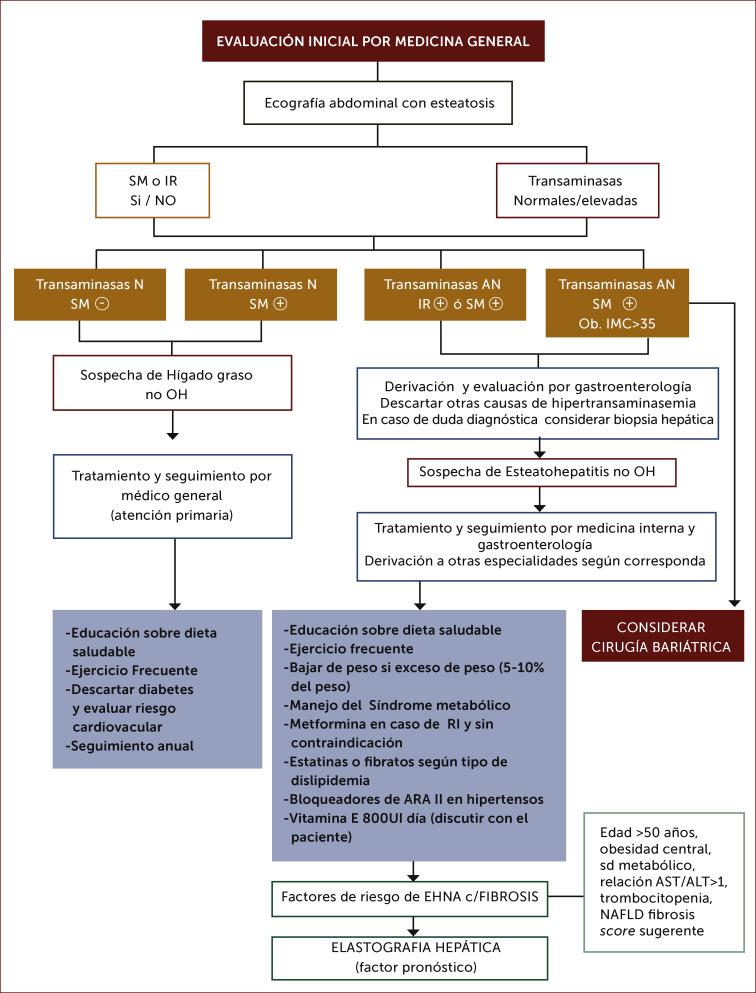 Dieta para higado graso no alcoholico pdf
