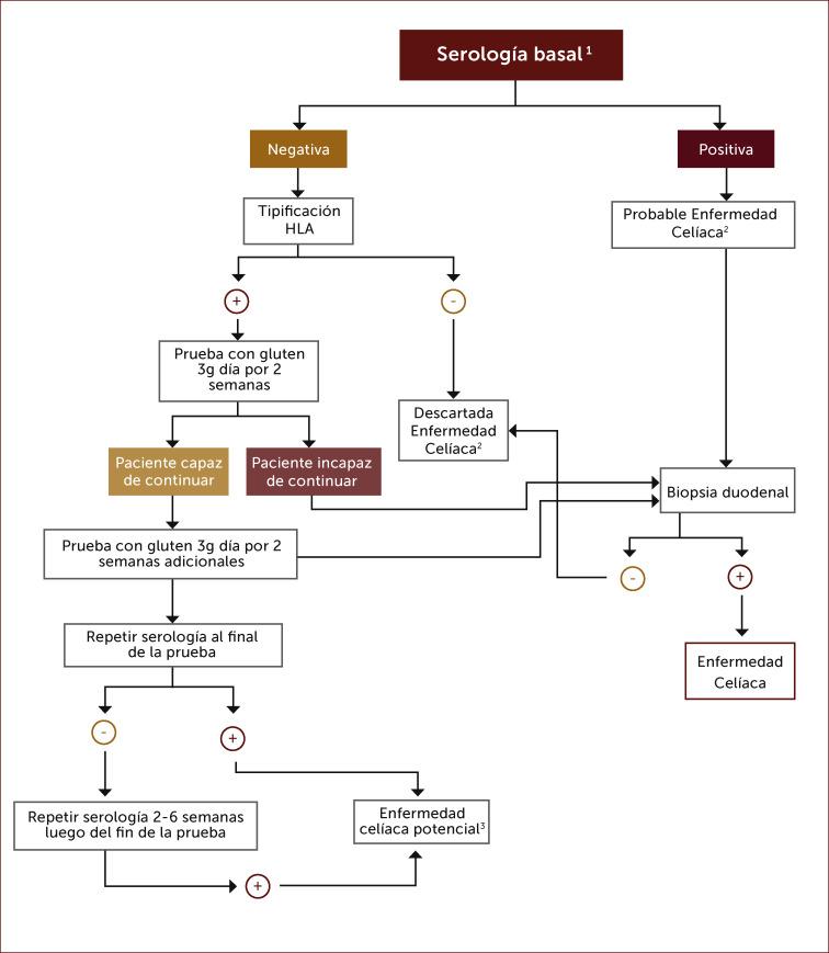 diagrama de fisiopatología de la inflamación de la diabetes