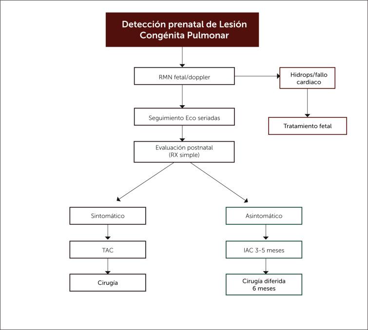 Diagrama esquemático de la fisiopatología de la hipertensión pulmonar
