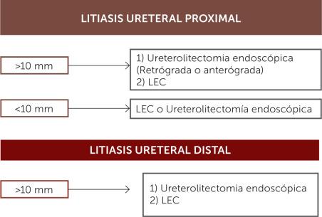 diagnóstico de hematuria diferencial y dolor en la ingle derecha