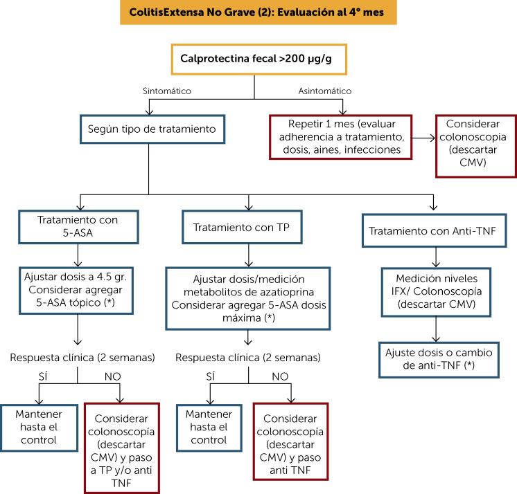 Anti colitis symptoms