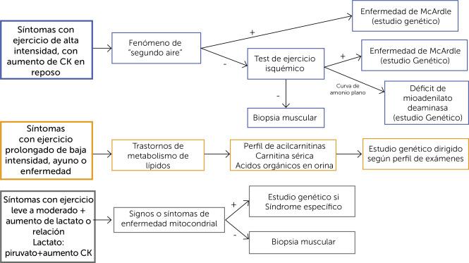 precauciones de ejercicio de polimiositis para la diabetes