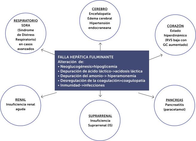 falla hepatica aguda criterios