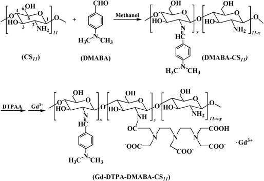 Chitosan oligosaccharide based Gd-DTPA complex as a potential
