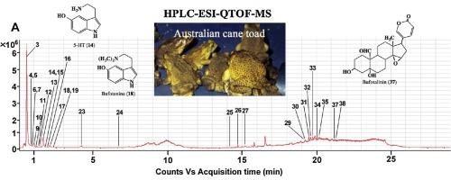 Multi-constituent identification in Australian cane toad