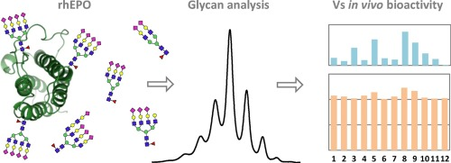Comprehensive glycan ysis of twelve recombinant human ... on