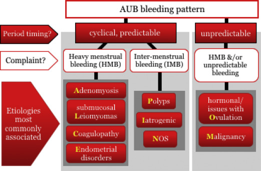 endometrial cancer bleeding pattern)