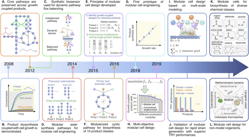 Modular Design Implementing Proven Engineering Principles In Biotechnology Sciencedirect