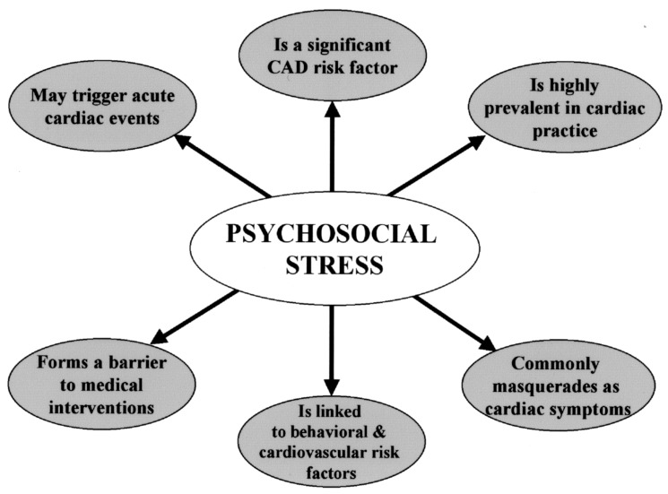 The Epidemiology Pathophysiology And Management Of Psychosocial