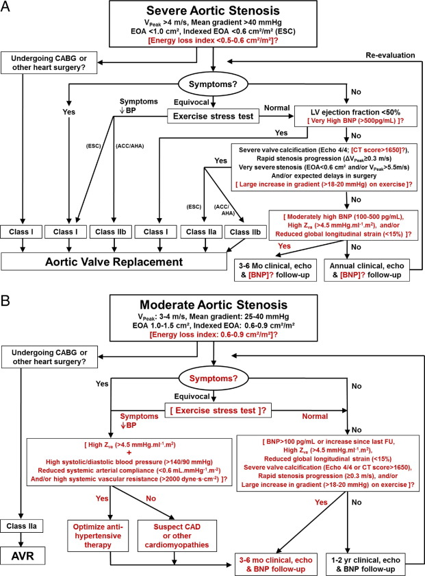 Improving Assessment Of Aortic Stenosis Sciencedirect