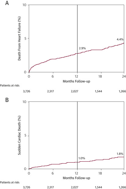 Late Cardiac Death in Patients Undergoing Transcatheter