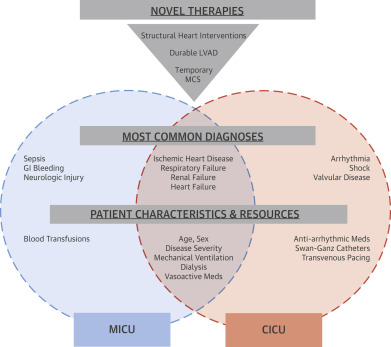 The Genesis, Maturation, and Future of Critical Care Cardiology