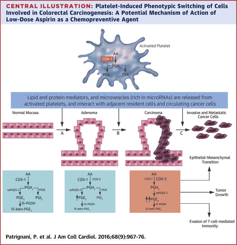 Aspirin And Cancer Sciencedirect