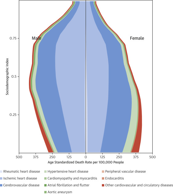 Global, Regional, and National Burden of Cardiovascular