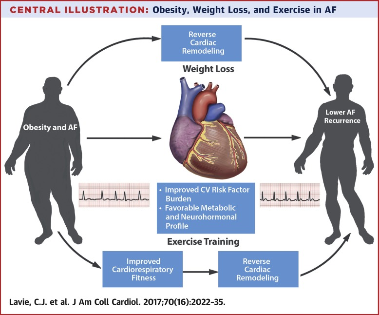 Obesity and Atrial Fibrillation Prevalence, Pathogenesis, and ...