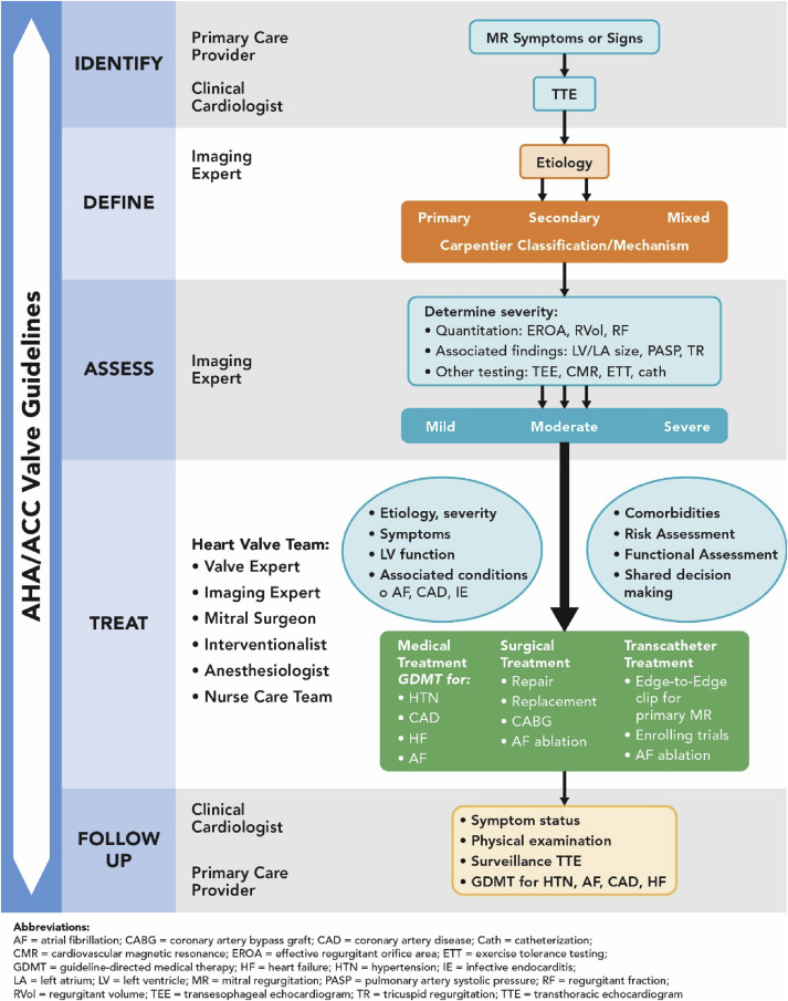 2017 Acc Expert Consensus Decision Pathway On The Management Of