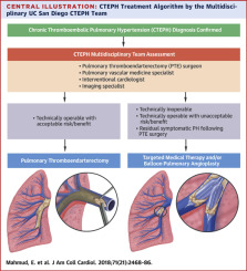Chronic Thromboembolic Pulmonary Hypertension: Evolving