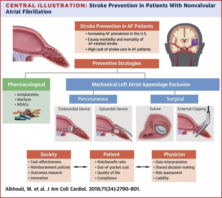 Stroke Prevention in Nonvalvular Atrial Fibrillation: A