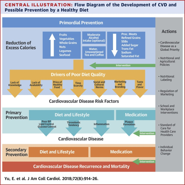 Nutrition and Heart Disease: Causation and Prevention
