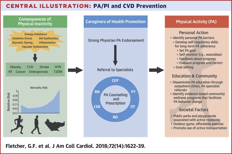 Promoting Physical Activity And Exercise Jacc Health Promotion Series Sciencedirect