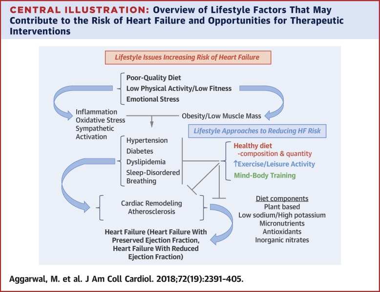 Lifestyle Modifications for Preventing and Treating Heart Failure -  ScienceDirect